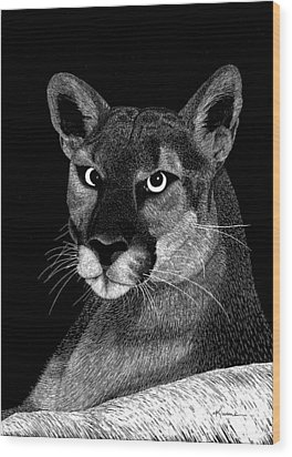 Wood Print featuring the mixed media Mountain Lion by Kume Bryant