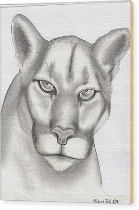 Mountain Lion Wood Print by Rick Hill