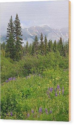 Mountain Morning Wood Print