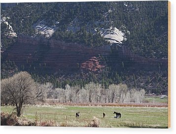 Wood Print featuring the photograph Mountain Pasture by Lorraine Devon Wilke