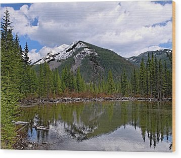 Mountain Pond Reflection Wood Print by Roderick Bley