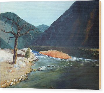 Mountain River Wood Print by Stephen  Hanson