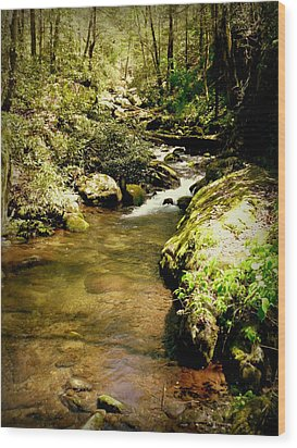 Mountain Stream Wood Print by Cindy Wright