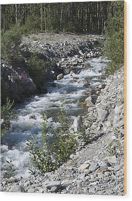 Mountain Stream Wood Print by George Hawkins