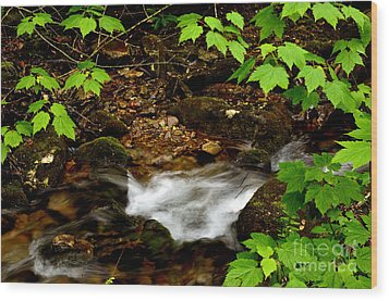 Mountain Stream In Spring Wood Print by Thomas R Fletcher