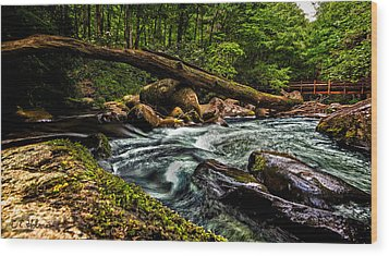 Mountain Stream Iv Wood Print by Christopher Holmes