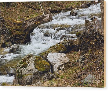 Wood Print featuring the photograph Mountain Stream by Les Palenik