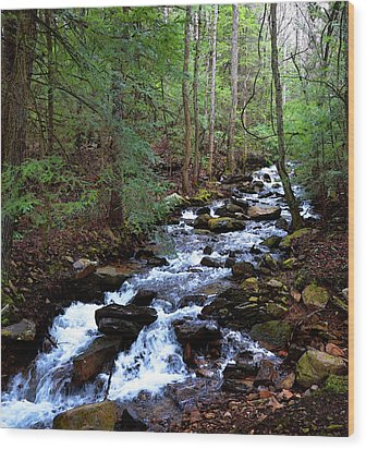 Wood Print featuring the photograph Mountain Stream by Paul Mashburn