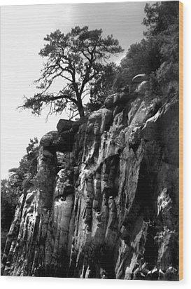 Mountain Tree Wood Print