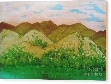 Mountain View Of Ecuador Wood Print by Josie Weir