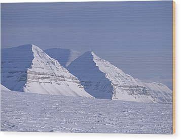 Mountains Above Kings Glacier Wood Print by Gordon Wiltsie