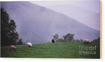 Mourn Mountains Approaching Rain Wood Print by Thomas R Fletcher