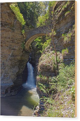 Mouth Of The Glen Watkins Glen State Prk Wood Print by Joshua House