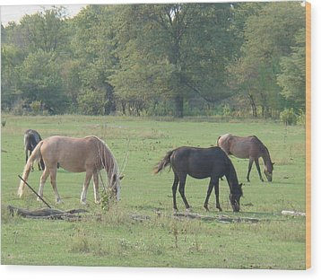 Wood Print featuring the photograph Mowing The Lawn by Bonfire Photography