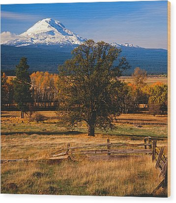Mt. Adams Autumn Wood Print