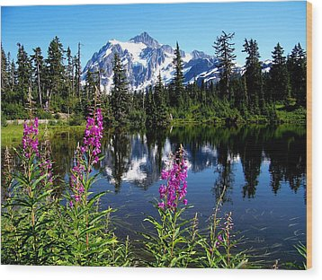 Mt. Baker Reflections Wood Print by Glenn McCurdy