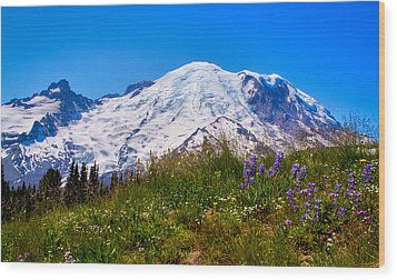Mt Rainier Meadow With Lupine Wood Print by David Patterson