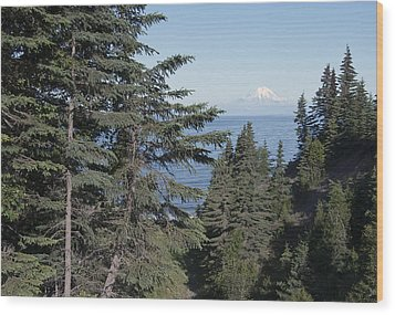 Mt. Redoubt View Wood Print by George Hawkins