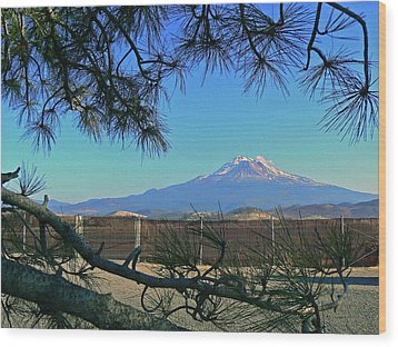 Mt Shasta At Weed  Wood Print by Pamela Patch