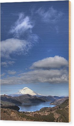 Wood Print featuring the photograph Mt.fuji And Lake Ashinoko by Tad Kanazaki