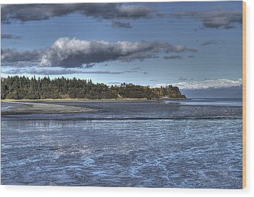 Mud Bay  Wood Print by Michele Cornelius