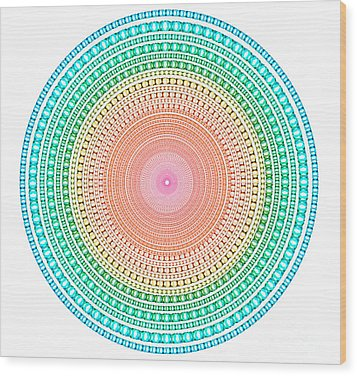 Multicolor Circle Wood Print