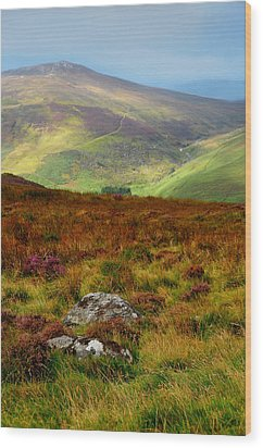 Multicolored Hills Of Wicklow. Ireland Wood Print by Jenny Rainbow