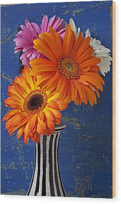 Mums In Striped Vase Wood Print by Garry Gay
