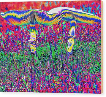Mushrooms On Mushrooms Wood Print