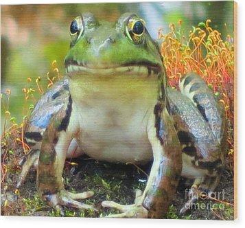 My Frog Friend Wood Print by Patricia Januszkiewicz