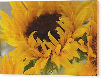 Wood Print featuring the photograph My Little Slice Of Sunshine by Tanya Tanski