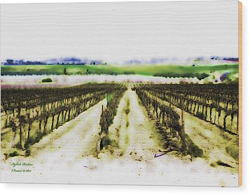Wood Print featuring the photograph My Well-beloved Had A Vineyard by Itzhak Richter