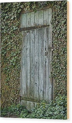 Wood Print featuring the photograph Mysterious Doorway by Vicki DeVico