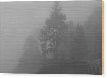 Wood Print featuring the photograph Mystery In The Trees by Katie Wing Vigil