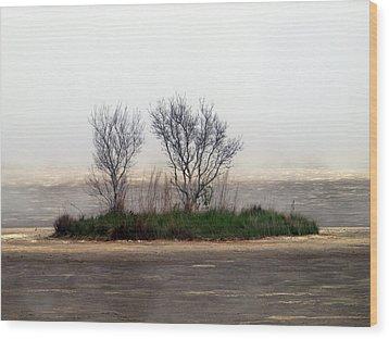 Mystery Island Wood Print by Kim Schmidt
