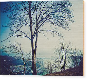 Wood Print featuring the photograph Mystic Blue by Sara Frank