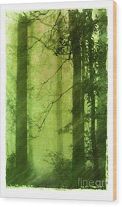 Mystical Glade Wood Print by Judi Bagwell