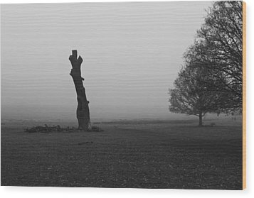 Wood Print featuring the photograph Naked Tree by Maj Seda