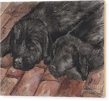 Wood Print featuring the painting Nap Time by Nancy Patterson