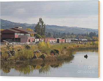 Napa River In Napa California Wine Country Wood Print by Wingsdomain Art and Photography