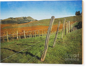 Napa Valley In Autumn Wood Print by Ellen Cotton
