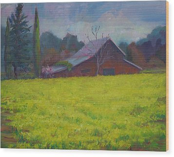 Napa Valley Mustards And Red Barn Wood Print by Deirdre Shibano