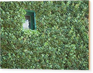 Napa Wine Cellar Window Wood Print by Shane Kelly