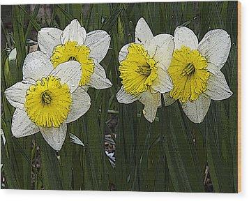 Narcissus Wood Print by Michael Friedman