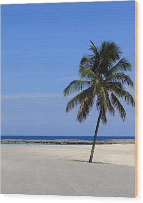 Nassau Palm Wood Print by Coby Cooper