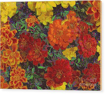 Nasturtiums Wood Print by Anne Havard