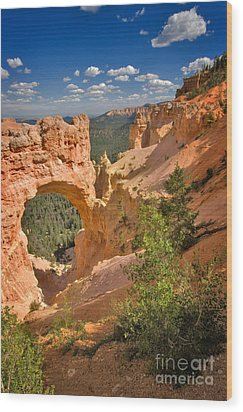 Natural Bridge In Bryce Canyon National Park Wood Print by Louise Heusinkveld