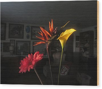 Wood Print featuring the photograph Natural Light by Tina M Wenger