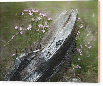 Natural Sculpture Wood Print