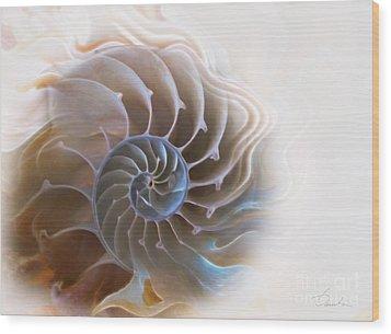 Natural Spiral Wood Print